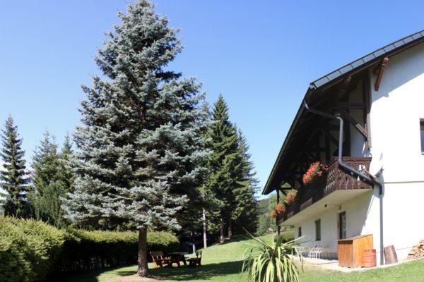 ferienhaus (4)