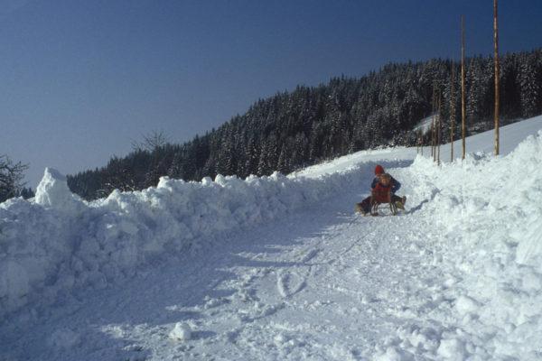 winter saualpe (2)